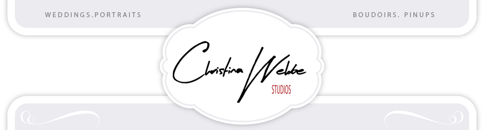 Professional Wedding Photographer in Chicago logo